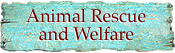 Taos and Northern New Mexico Animal welfare organizations, charities, animal shelters, rescue and rehabilitation